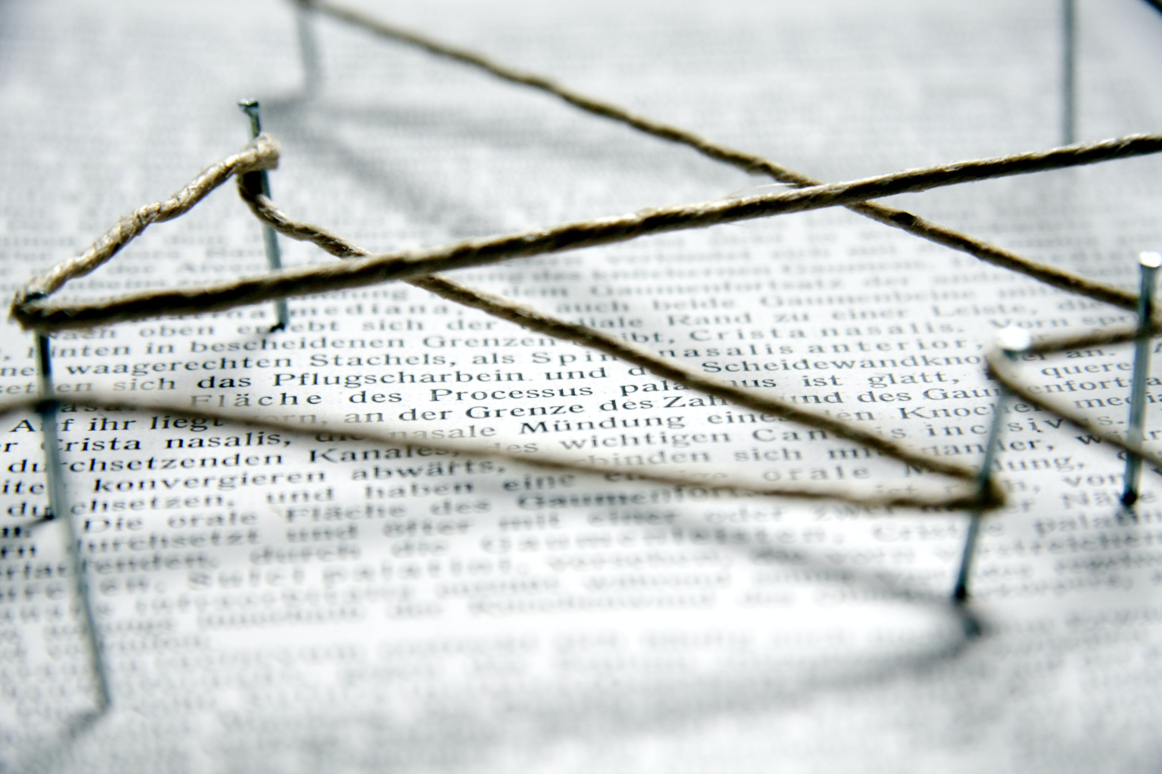 Nail pin - Metaphor: Academic networking Germany