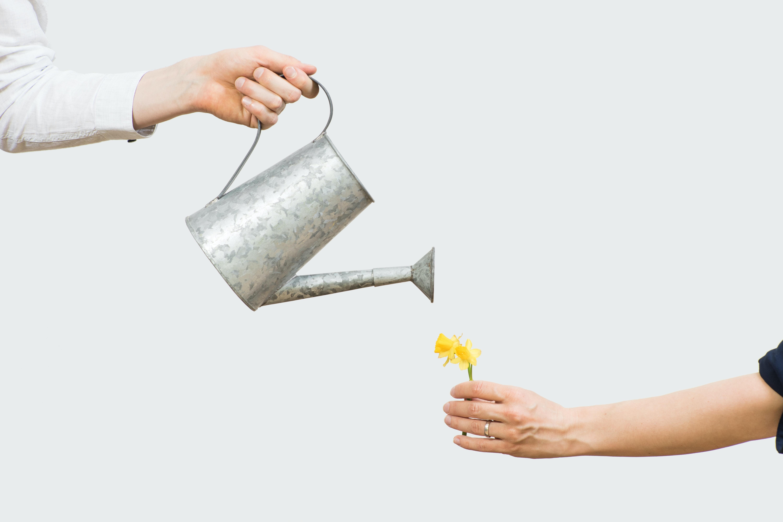 Watering can - Metaphor: Research development salary German