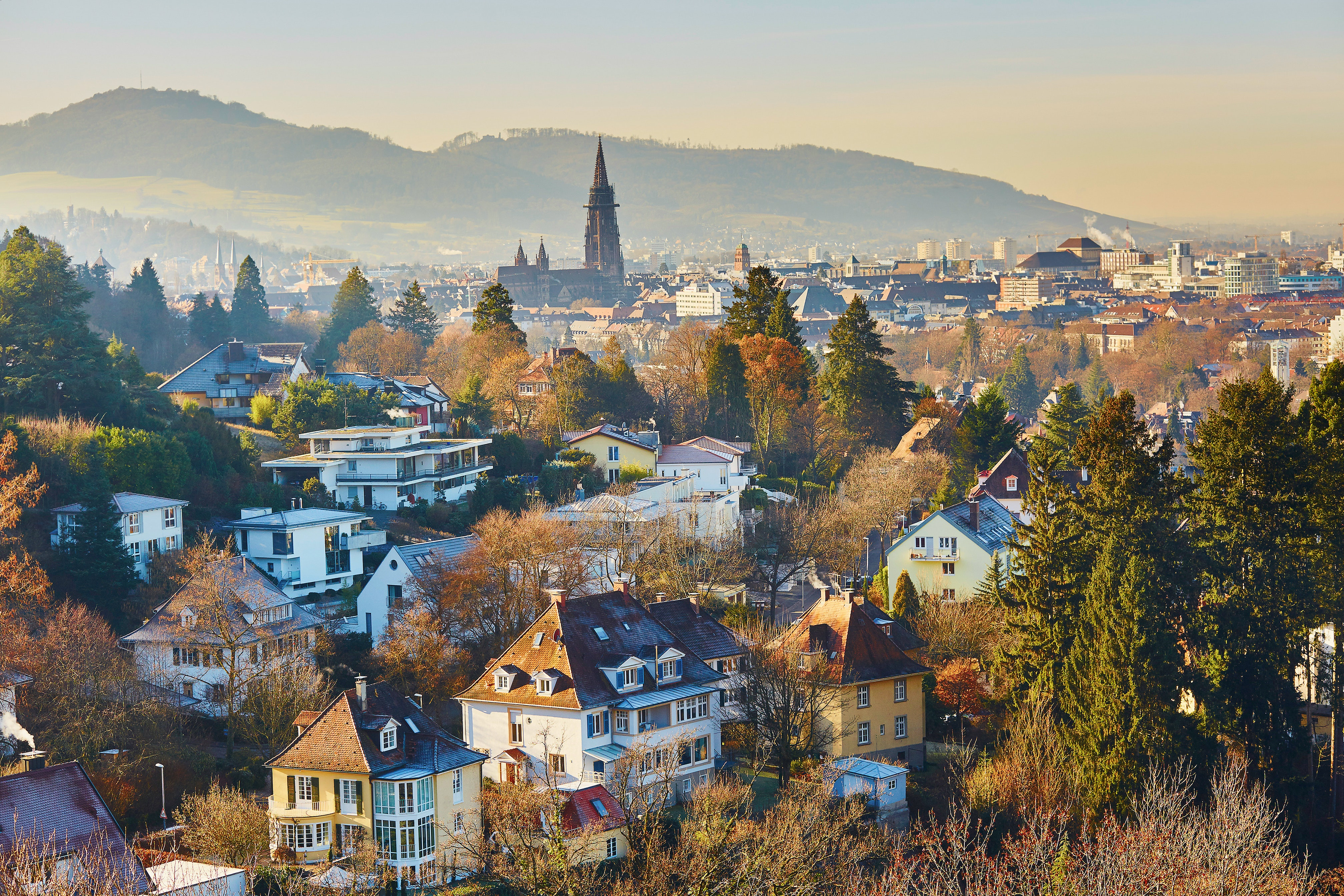 Working in Freiburg - Panoramic View